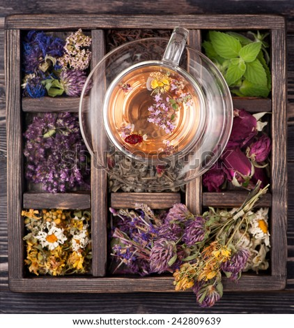 Tea with herbs, flowers and berries and dried herbs in a wooden box - stock photo