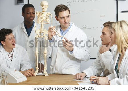 Teacher With Model Of Human Skeleton In Biology Class - stock photo