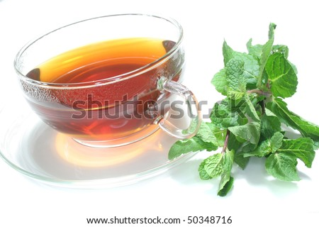 Teacup with mint tea and fresh mint on a white background