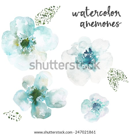 Teal Blue Watercolor Anemone Flowers - stock photo