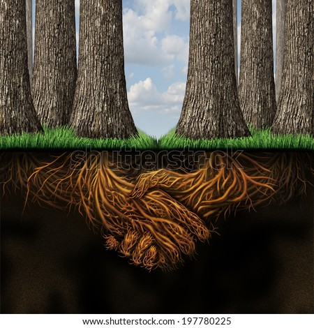 Team agreement business partners concept as two groups of trees coming together in friendship and cooperation for mutual growth success as underground roots shaped as businesspeople shaking hands. - stock photo