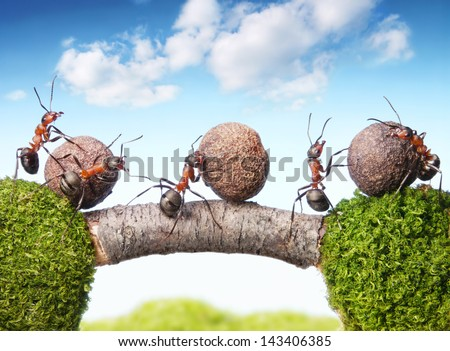 team of ants rolling stones on bridge, teamwork - stock photo