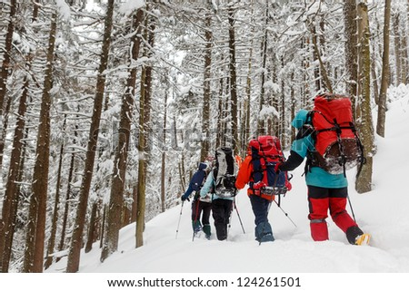 team of hikers in winter mountains - stock photo