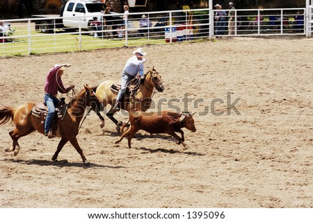 Team roping competition at a rodeo. - stock photo