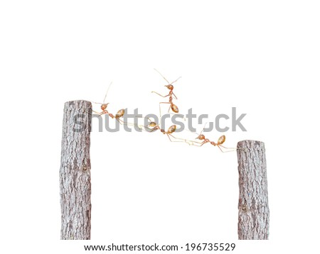 teamwork concept - stock photo