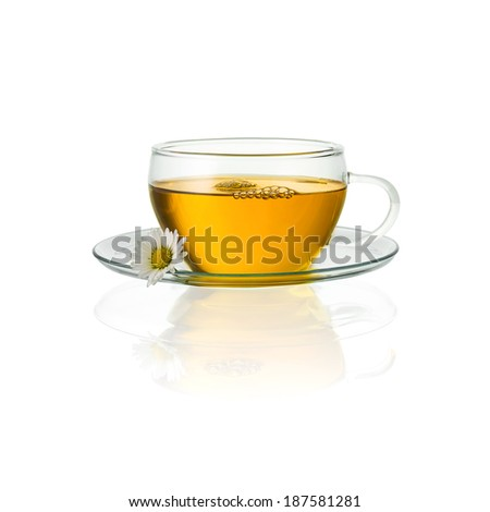 teapot cup tea with chamomile daisy hot drink aroma isolated on white background with reflection - stock photo