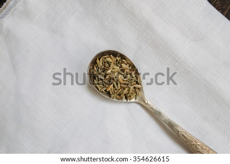 teaspoon fennel. fennel seeds, fragrant fennel, fragrant spices - stock photo