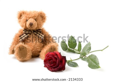 Teddy Bear and Rose - stock photo