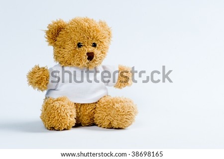 Teddy bear at isolated white background - stock photo