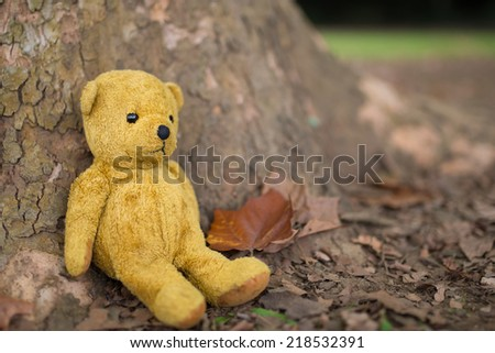 TEDDY BEAR brown color on the tree - stock photo