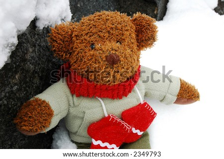 Teddy bear dressed for winter playing outside in the snow - stock photo