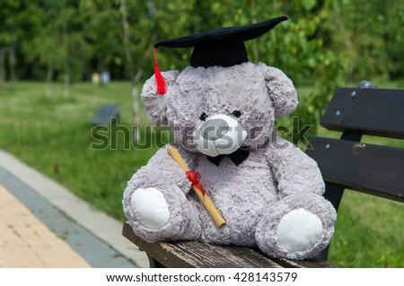 Teddy bear graduate bachelor's degree - stock photo