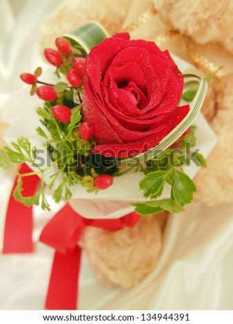 Teddy Bear Hold a Red Rose Bouquet