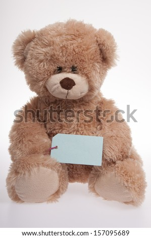 teddy bear holding a blue luggage label isolated on white background