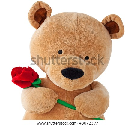Teddy bear holding a rose isolated on white with clipping path - stock photo