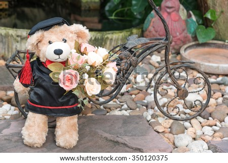 teddy bear holding roses with graduation gown on garden background, with space - stock photo