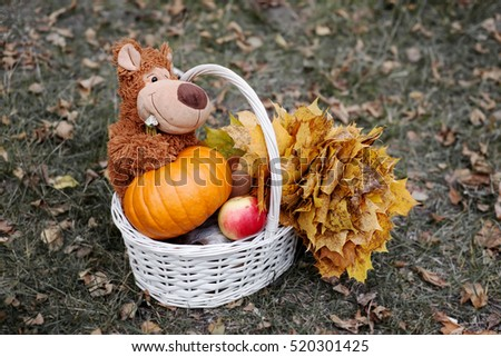 Teddy bear in a basket.