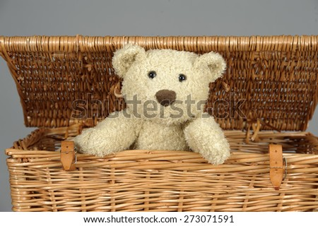 Teddy bear in a wicker trunk