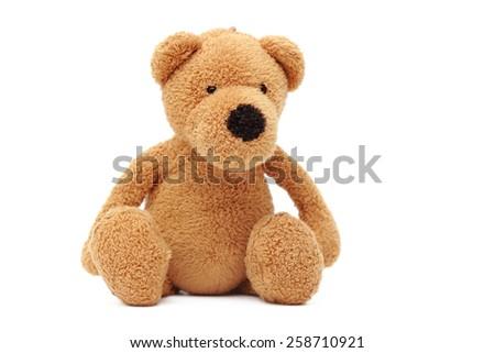 Teddy bear isolated - stock photo