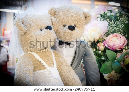 Teddy Bear marriage ceremony