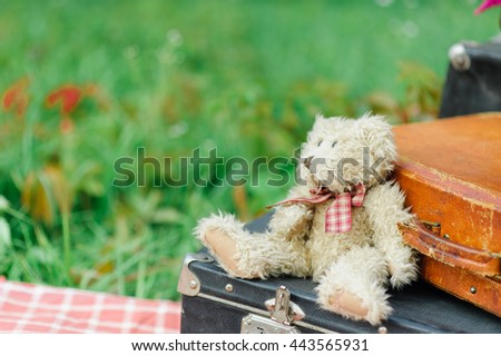 teddy bear on a suitcase - stock photo