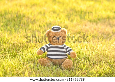 Teddy Bear On the grass background.have Space Write word.