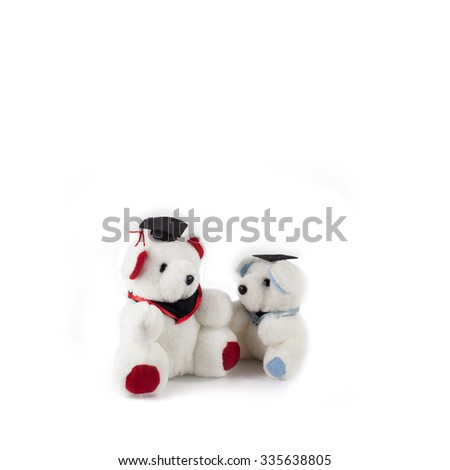 teddy bear on white background - stock photo