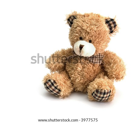 teddy bear on white background with copyspace