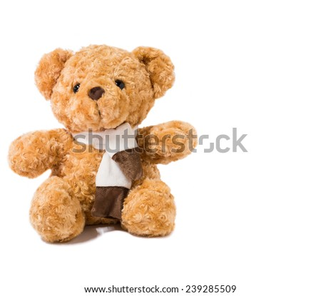 teddy bear over the white background - stock photo
