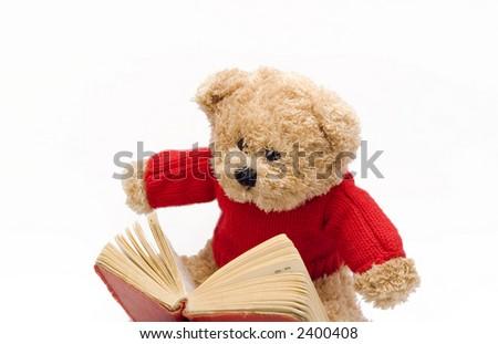 teddy bear reading a book - stock photo