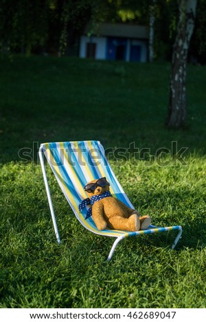 teddy bear sits fun deck chair stock photo royalty free 462689047