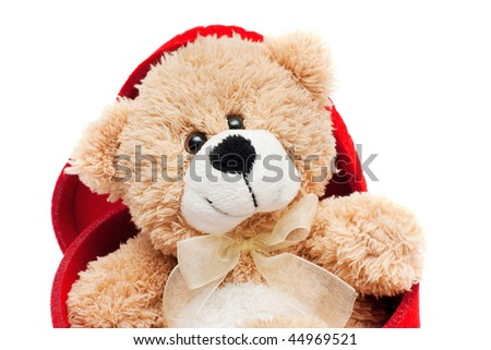 Teddy bear sitting in the red box