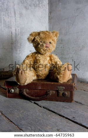 teddy bear waiting on a suitcase to be discovered