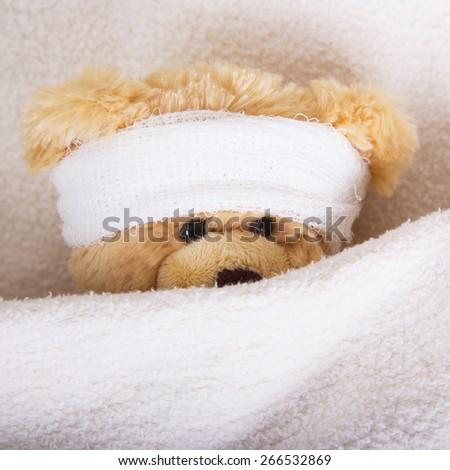 teddy bear with bandaged head - stock photo
