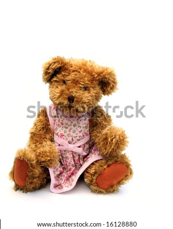 teddy bear with dress on