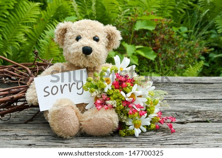 teddy bear with flowers and card with lettering sorry/flowers/teddy