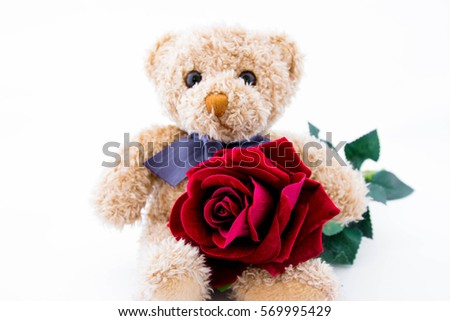 Teddy Bear With Rose On White Background,Love Valentine
