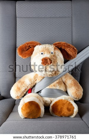 Teddy bear with seat belt fastened - stock photo