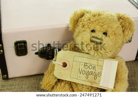 Teddy Bear with vintage suitcase and 'Bon voyage!' meaning 'safe journey' on luggage tag.