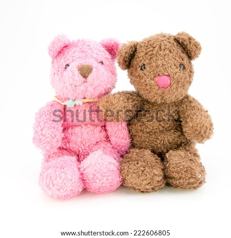 Teddy bears isolated on white background