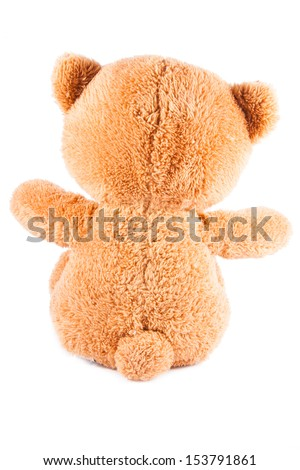 Teddy isolated on white background. Back view