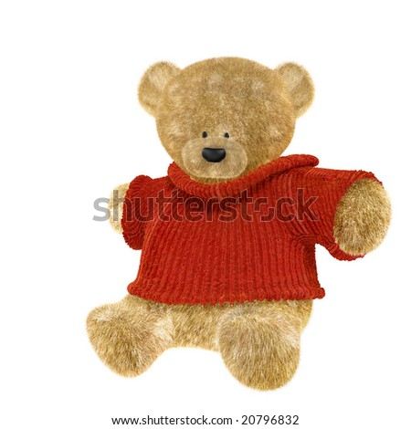 Teddy on white background