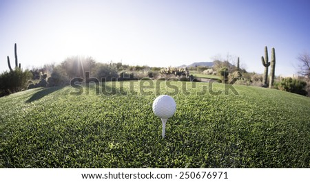 Tee off - golf ball - extreme wide angle view from from above. Fisheye lens effect.  - stock photo
