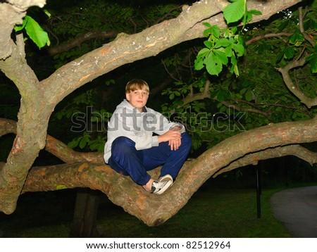Teen boy sitting on the tree, night shot - stock photo