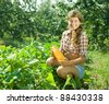 Teen girl picking vegetable marrow in field - stock photo