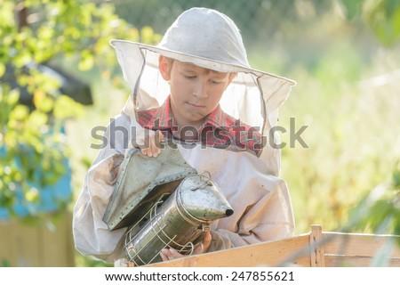 Teenage beekeeper is inspecting commercial bee yard - stock photo