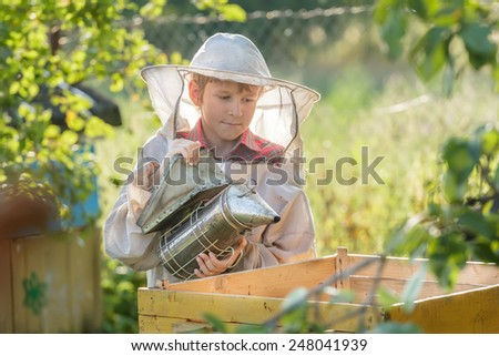 Teenage beekeeper smoking hive in a bee yard - stock photo
