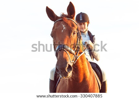 Teenage girl equestrian riding horseback. Vibrant summertime outdoors horizontal image with filter. - stock photo