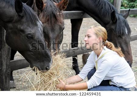 teenage girl feeding horses in the farm - stock photo