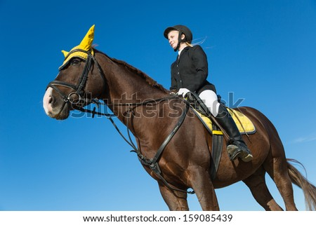 Teenage girl sitting on a horse on a background of blue sky.